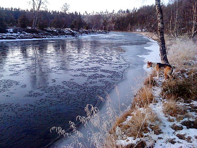 """""""Jeg satt og glante på issørpa som kom drivende nedover elva, tenkte og kjente etter.."""""""