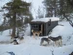 En kort sledetur hjemmefra har jeg ei bittelita koie i skogen.