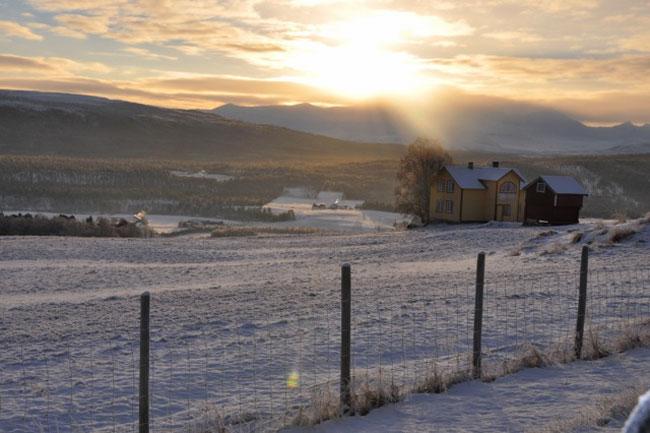Vinter-i-Folldal-(25)