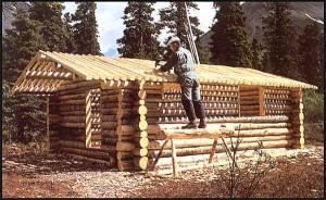 Richard Proenneke i arbeid med tømmerhytta som skulle bli hans bosted i 30 år.