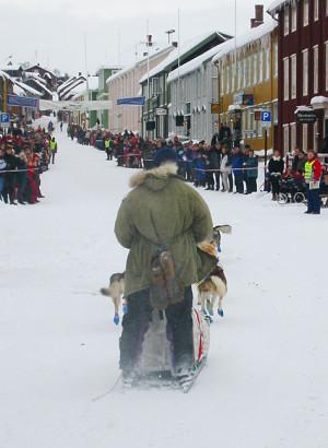 Fra starten på det 50 mil lange Femundløpet i 2003.