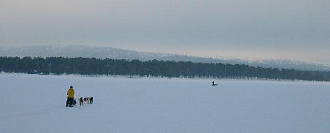 På veg hjem fra Femundtunet mot Røros etter en lang tur gjennom de dype svenske skoger.