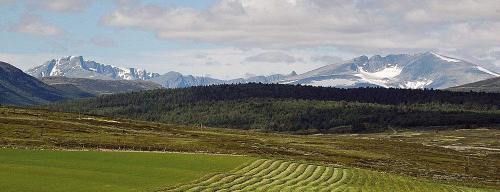 Dovrefjell med Svånåtindan og Snøhetta har en ruvende posisjon, både i norsk historie og i landskapet. Her sett fra Folldal.