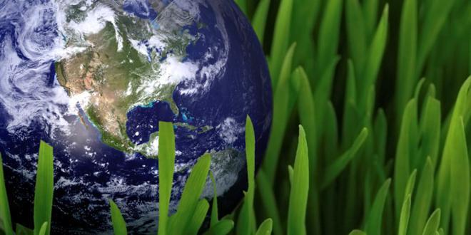 Hvor stor er sannsynligheten for at vi får en grønn revolusjon?
