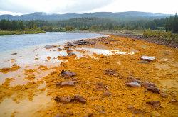 Folla har i flere år vært fiskedød som følge av at mange tonn tungmetaller renner ut i elva hvert eneste år fra de nedlagte gruvene i Folldal.