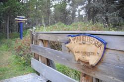 Pinnelekbrua gir adgang til Hundremeterskogen.